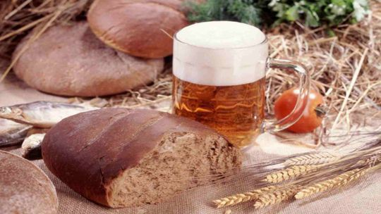 Brewery tours in Italy