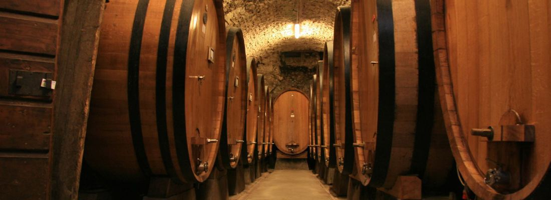 wine-tour_marche