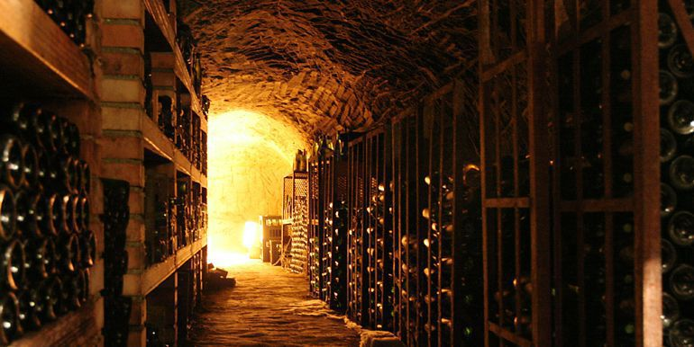 Wine tours in Le Marche Italy